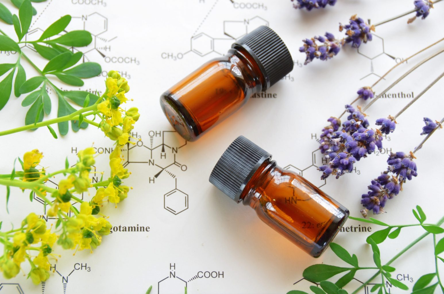 Level IV Essential Oil Chemistry 101 Course