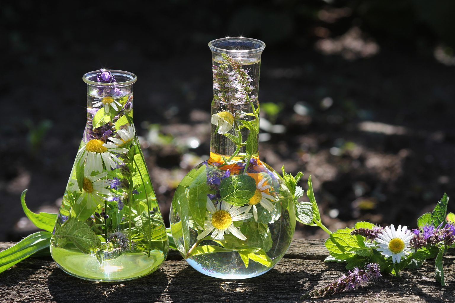 beakers with flowers in them